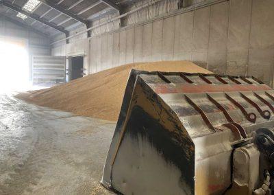 Cereali - Particolare attenzione è dedicata alla movimentazione dei prodotti NO OGM, GMP+ e di quelli derivanti da Agricoltura Biologica
